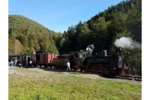 Herbst Pfalz 2018 (19)